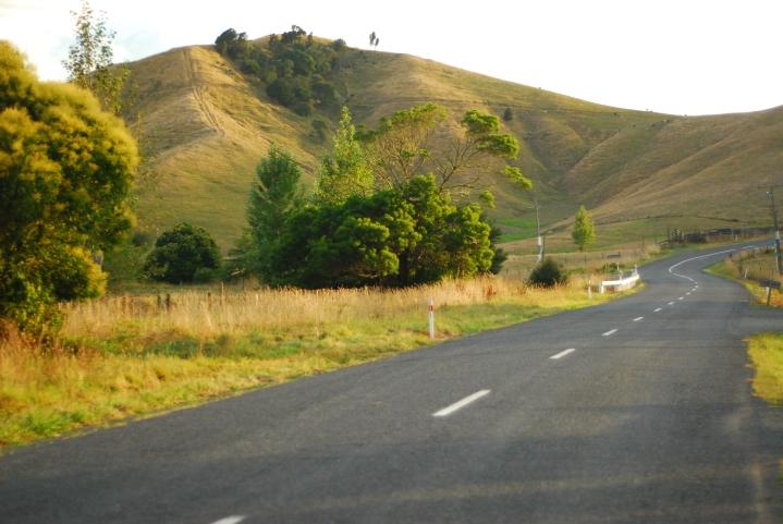 Welcome to the Waikato!