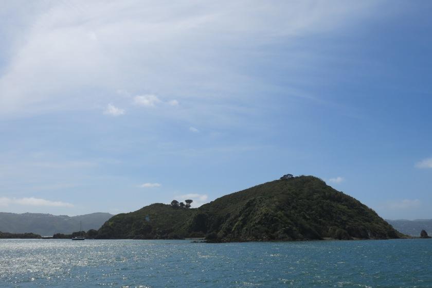 Matiu / Somes Island