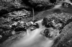 Falls @ Dry Creek Valley