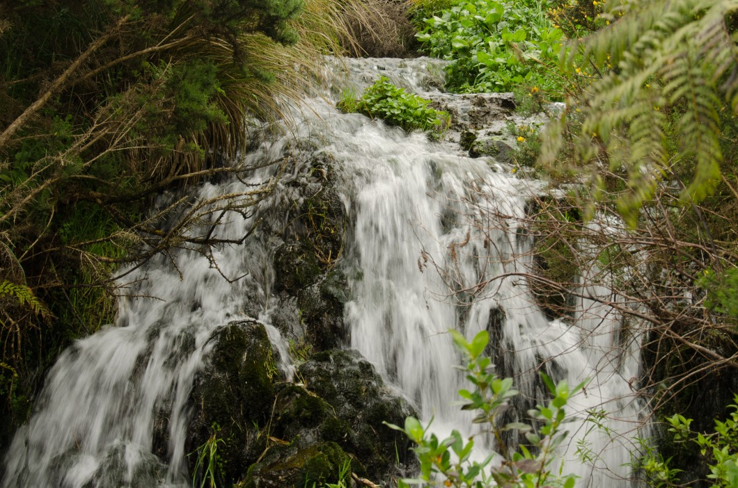 Falls between Belmont Trig and Middle Ridge Trac