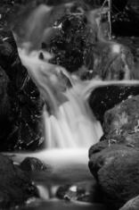 @ Percy's Scenic Reserve, Petone