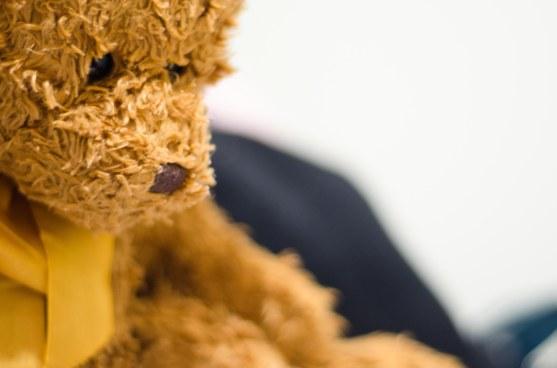 No. 15: My bear