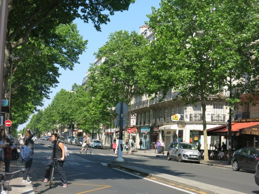 Tree-lined streets