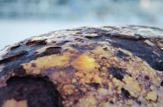 Day 4: Rust