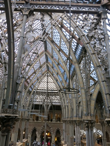 Steel Arches (Oxford University Museum)