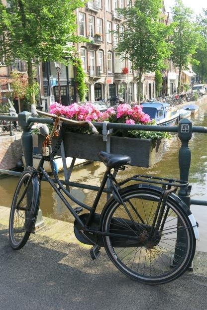 bike, bridge and blossoms