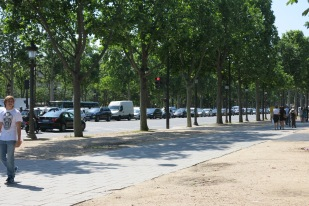 Green part of Champs Elysee