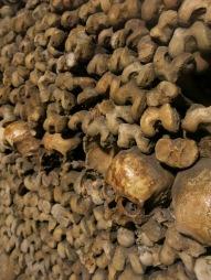 more bones