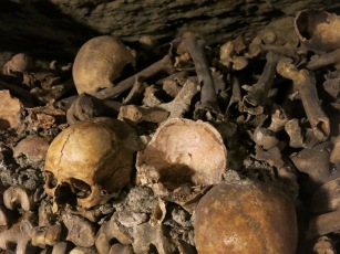 More skulls