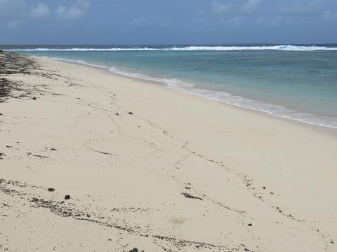 'Oholei Beach