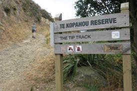 aka Te Kopahou Reserve