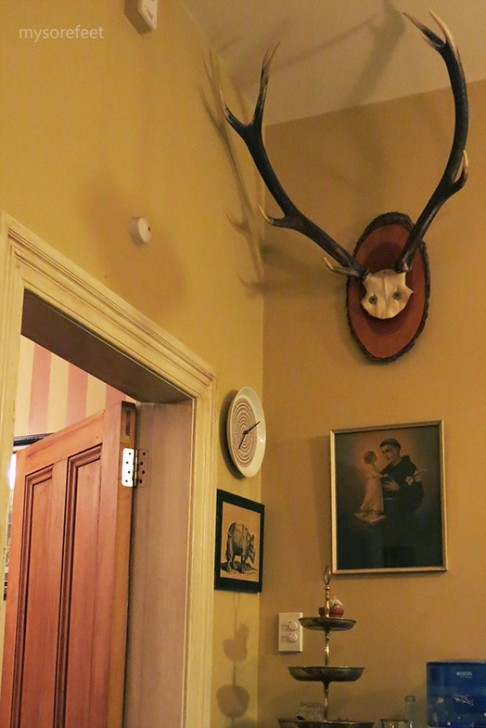Wall decorations at the main dining area