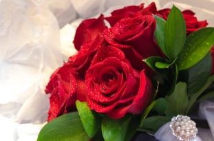 Bouquet of the red roses
