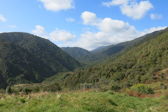 The view on the left of the picnic spot